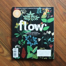 Flow - Issue 29
